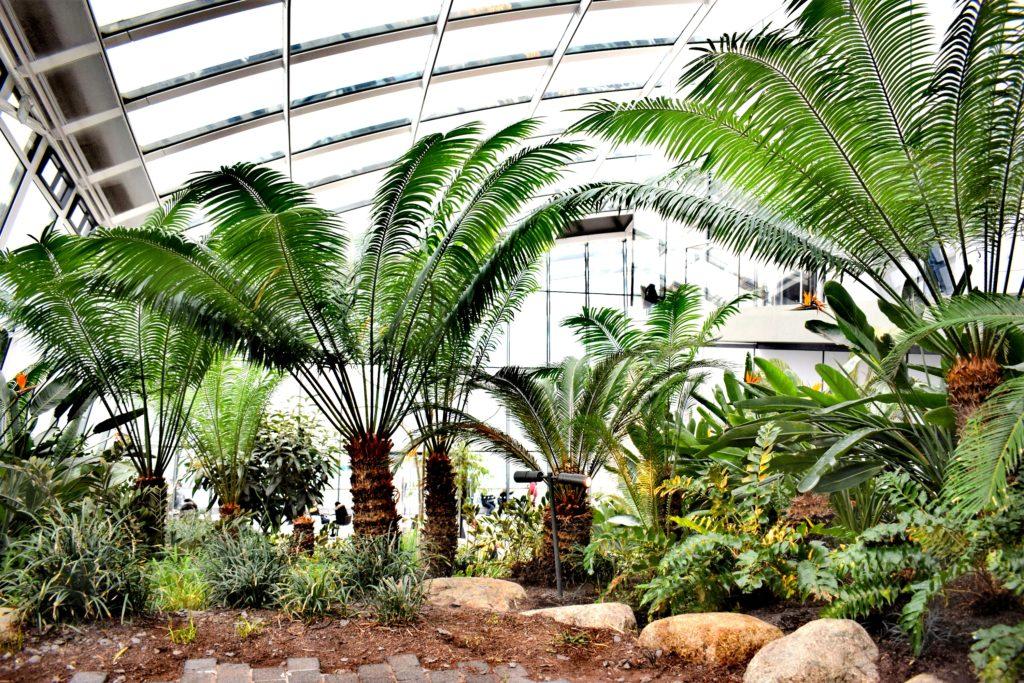 Jardin du Sky Garden