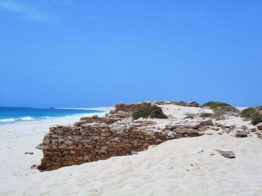 La plage aux tortues