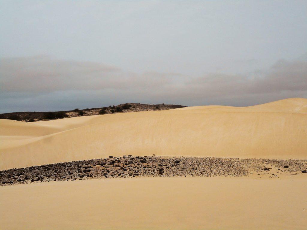 Le désert de Viana