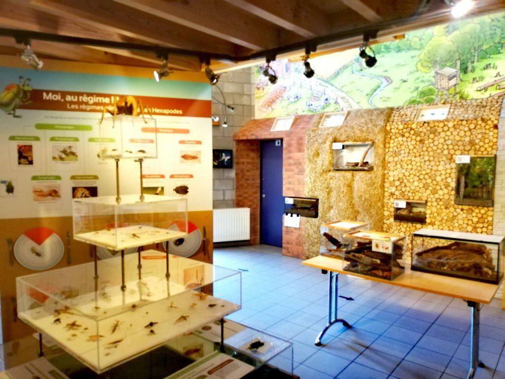 La grande salle du musée