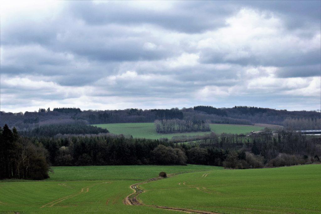 Vue sur les champs vallonés